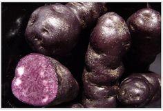 New Zealand Foods Maori potato (also known by kiwis as a purple kumara… I love kumara) - OMG, Love these babies! Cold Party Food, Maori Words, Potato Varieties, Fun Bucket, New Zealand Food, Maori People, Purple Potatoes, Green Algae, Kiwiana
