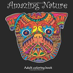 Amazing Nature: Adult Coloring Book (Stress Relieving) (Volume 5) by Tali Carmi  $7.76