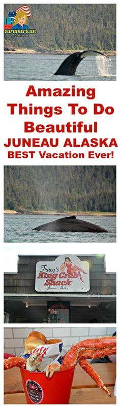 Are you planning a trip to Juneau, Alaska? If so, do not miss these amazing things to do. Whale Watching Adventure and Eating Delicious King Crab Legs Alaska Travel, Travel Usa, Alaska Trip, Travel Tips, Disney Wonder Cruise, Seward Alaska, Whale Watching Tours, Cruise Excursions, Living In Alaska