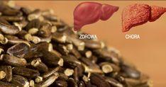 Które zioło najmocniej odtruwa i regeneruje wątrobę? - Motywator Dietetyczny Health Fitness, Candy, Chocolate, Breakfast, Food, Chopsticks, Morning Coffee, Essen, Chocolates