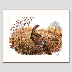 "Wild Turkey Art w/Mat (Country Cabin Wall Decor, Bird Artwork) ""Late Autumn Forage"" -- Vintage Matted Print. Vintage Wild Turkey Art Print w/Mat , Wildlife Wall Decor, Bird Artwork -- Unframed Matted Print One in a beautiful series of 30 woodland animal and bird illustrations for home, office or nursery One ""Wild Turkeys, Autumn"" vintage, mint-condition James Lockhart print (attached to a new, off-white mat) Finely detailed 1970s artwork: A flock of turkeys forage through the woodland…"