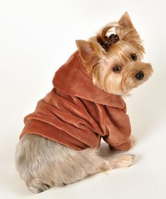 Stretch Velour RUST dog Hoodie by Romy and Jacob $45.00