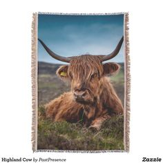 Highland Cow Throw Blanket Photo Memories, Summer Evening, Throw Blankets, Party Hats, Are You The One, Cow