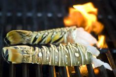 Grilled Lobster Tails basted with butter and garlic