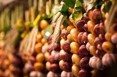 """""""Zibelemärit"""" Zwiebelmarkt in Bern. Jeweils am vierten Montag im November. 25.11.2013 in diesem Jahr. (Bild: Yves Maurer)"""