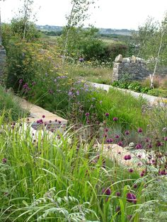 A windy garden in the Purbeck Hills has a stunning, changing design.