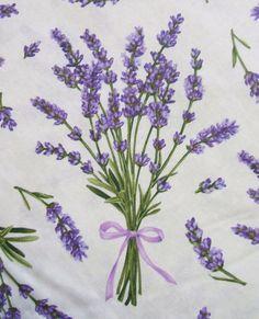 """Képtalálat a következőre: """"lavender drawing"""""""