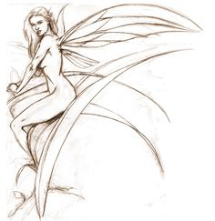 Sexy Fairy Sketches Drawings | fairy drawings image search results