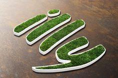 Ekologiczne logo z islandzkiego mchu MOSS TREND. Zapraszamy do BandIt Design: www.banditdesign.pl  #logo #eco #design #illy