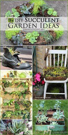 9+ DIY Succulent Garden Ideas at empressofdirt.net
