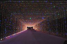 PRAIRIE LIGHTS More than 4 million bulbs twinkle in this drive-through holiday attraction with new displays. Visitors can hop out at the Holiday Village, check out a walk-through area and see a laser show. This year, there's a VIP pass with no waiting in traffic lines, a guided tour through the drive-through, fast passes for carnival rides and more (check the website for details). Continues through Jan. 4 at Lynn Creek Park, Grand Prairie. $20-$30 per car; light show and walk-through cost…