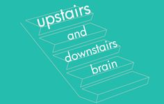 We love the concept of the upstairs and the downstairs brain from The Whole-Brain Child. What part of the brain is the child using? How can we help guide him through this situation? Dive into a little brain lesson with us!