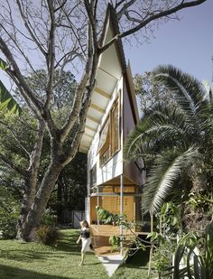 Taringa Treehouse / Phorm architecture + design