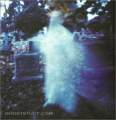 Ghost Gallery!