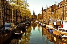 Amsterdam. This may look like a canal to you , but a duck thinks it is an airport for takeoffs and landings.