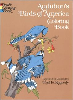 Year 1--entire coloring book with images of Audobon birds for the kids to color