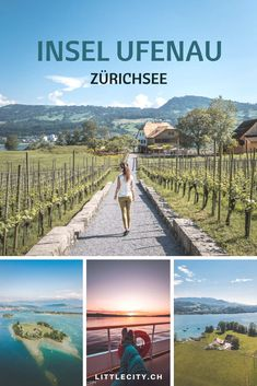Weekend Trips, Day Trips, Camping Am See, Travel Around The World, Around The Worlds, Reisen In Europa, Free Time, How To Do Yoga, Switzerland