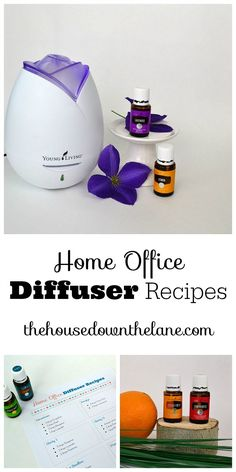 Getting your work done just got that much easier with these eight home office diffuser recipes using Young Living Essential Oils.