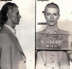 Bowie mugshot 1976