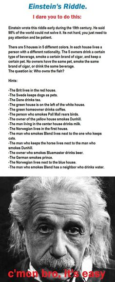 Einstein's Riddle...seriously going to do this.  I already made the grid for it ;).    I WILL SOLVE THIS.