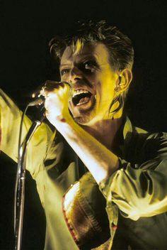 David Bowie Serious Moonlight Tour Winnipeg Stadium, September 14, 1983
