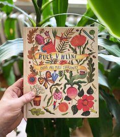 Na obrázku může být: rostlina
