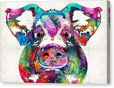 Colorful Pig Art - Squeal Appeal - By Sharon Cummings Canvas Print by Sharon Cummings