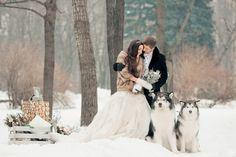 Вот прекрасная свадебная фотосессия с хаски. Прогулка с собаками по заснеженному лесу - ни с чем не сравнимое удовольствие. И только зимнее!