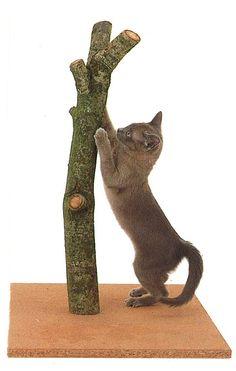 au natural cat scratch post