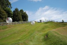 """Zorbing"" its the new way of getting down a hill! Just buckle into a big orb and hold on!"