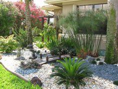South Florida Landscape Design « Miss Fancy Plants Landscape & Design