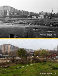 Bucharest, Desktop Screenshot