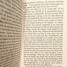 «La vie vous fait à l'aube une promesse qu'elle ne tient jamais. Romain #Gary, La promesse de l'aube #folio #livre #book #instabook #lecture #litterature»