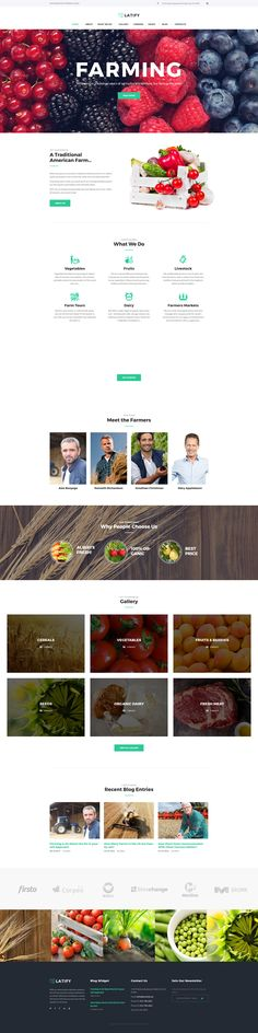 Farmer WordPress Theme