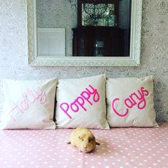 Sisters  #cushion Cheeky Sew & Sew