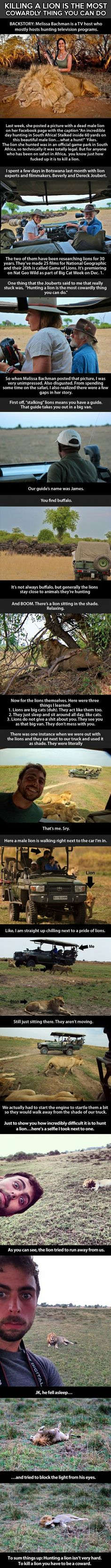 Well...good to know lions aren't as scary as you would think...I don't understand why you would hunt one :(