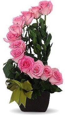 docena de rosas fiusha en base chocolate.