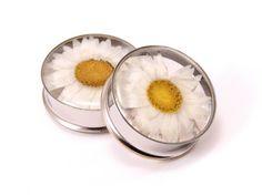 Embedded Thousand Needles Daisy Flower Resin Plugs