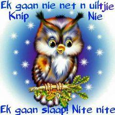Slaap Owl Who, Afrikaanse Quotes, Goeie Nag, Goeie More, Good Night Sweet Dreams, Good Night Image, Special Quotes, Good Night Quotes, Sleep Tight
