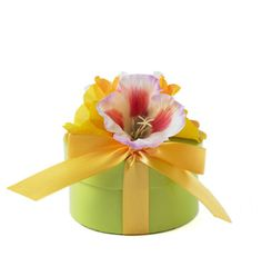 BloemBox Gift Collection