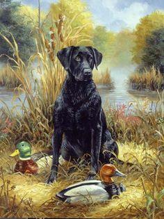 Labrador- Linda Picken
