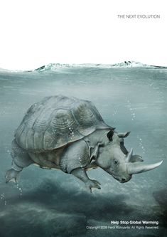 Rhino under water: http://www.greenerideal.com/lifestyle/0917-incredible-photos-illustrate-the-importance-of-climate-change/