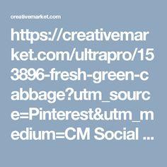 https://creativemarket.com/ultrapro/153896-fresh-green-cabbage?utm_source=Pinterest&utm_medium=CM Social Share&utm_campaign=Product Social Share&utm_content=fresh green cabbage ~ Nature Photos on Creative Market