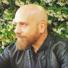 Bald Men With Beards, Bald With Beard, Bald Man, Great Beards, Awesome Beards, Hairy Men, Bearded Men, Beard Styles For Men, Hair And Beard Styles