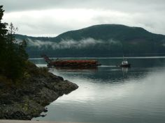 A tugboat pulling a barge in Kelsey Bay, near beautiful Sayward, BC (on Vancouver Island).