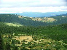 Карпатський національний парк - перлина Карпат. Це один із перших національних парків в Україні. Також він є одним з...