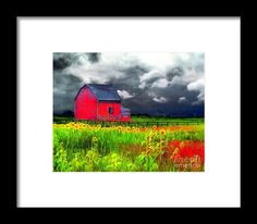 Red barn in a field of Sunflowers.
