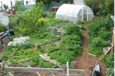 Profitable Permaculture..http://permacultureapprentice.com/successful-permaculture-farms/
