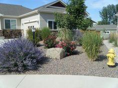 Xeriscape Landscaping Pictures In Colorado | portfolio home portfolio xeriscapes