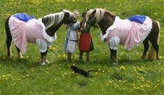 Fashion for... horses?